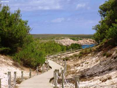 Image 2    Two Impressive Beachside Apart Hotels with over 440 Bedrooms for Sale in Menorca  186539