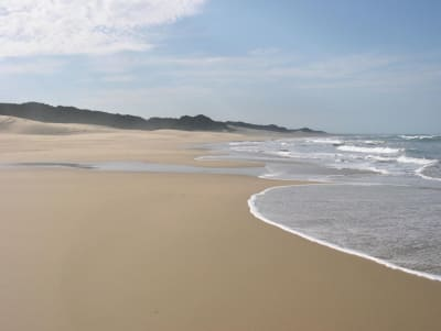 Image 4 |  A Superb Game Farm with 2km of Indian Ocean Beach Front  and an Estate of 260 hectares.  187097