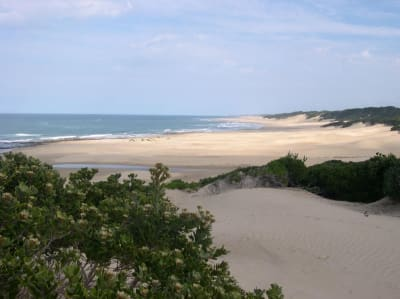 Image 8 |  A Superb Game Farm with 2km of Indian Ocean Beach Front  and an Estate of 260 hectares.  187097