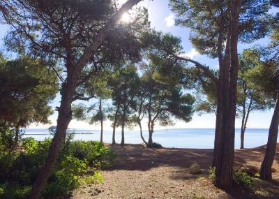 Image 2 |  4 bedroom villa for sale, Sargamassa, Santa Eularia des Riu, Ibiza 201041