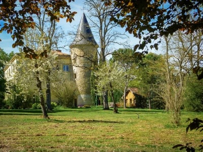 Image 1 | 7 bedroom French chateau for sale, Castres, Tarn, Midi-Pyrenees 201196