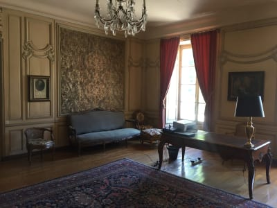 Image 6 |  Magnificent 32 bedroom chateau for sale, close to Paris with views of the Seine. 203213