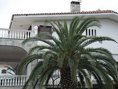 Image 11   4 bedroom villa for sale with 2,500m2 of land, Kassandra, Halkidiki, Central Macedonia 123734