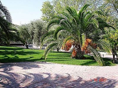 Image 7   4 bedroom villa for sale with 2,500m2 of land, Kassandra, Halkidiki, Central Macedonia 123734