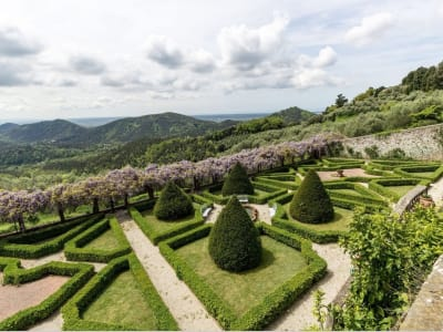 Image 25 | 5 bedroom villa for sale with 1,110,000m2 of land, Lucca, Tuscany 185140