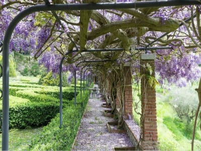 Image 29 | 5 bedroom villa for sale with 1,110,000m2 of land, Lucca, Tuscany 185140