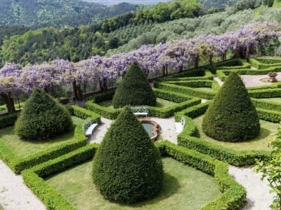 Image 7 | 5 bedroom villa for sale with 1,110,000m2 of land, Lucca, Tuscany 185140