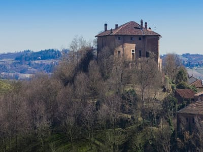 Image 3 | 10 bedroom castle for sale with 40,000m2 of land, Alessandria, Piedmont 197402