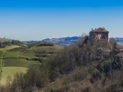 Image 4 | 10 bedroom castle for sale with 40,000m2 of land, Alessandria, Piedmont 197402