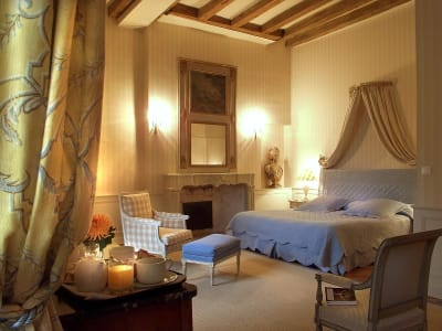 Image 11 | 16 bedroom French chateau for sale with 70,000m2 of land, Tours, Indre-et-Loire , Centre 200312