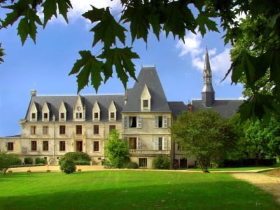 Image 3 | 16 bedroom French chateau for sale with 70,000m2 of land, Tours, Indre-et-Loire , Centre 200312
