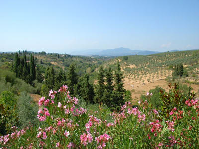 Image 14   6 bedroom villa for sale with 26,000m2 of land, Florence, Chianti 201026