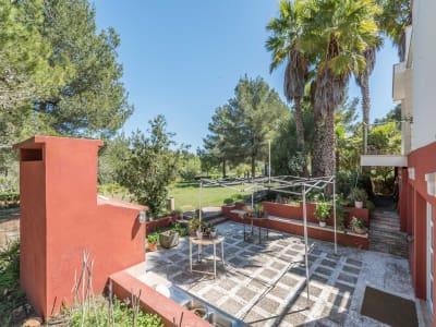 Image 24 | 4 bedroom villa for sale with 10,000m2 of land, Santa Gertrudis de Fruitera, Central Ibiza, Ibiza 201040