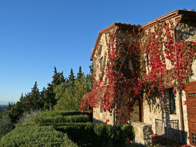 Image 28   Enchanting Estate in Tuscany for Sale with Guest House suitable for B&B with income potential 202790