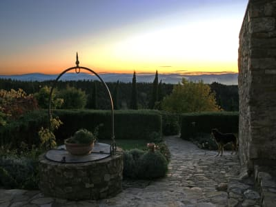 Image 30   Enchanting Estate in Tuscany for Sale with Guest House suitable for B&B with income potential 202790