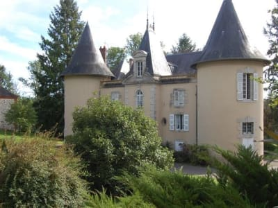 Image 5 | 15 bedroom French chateau for sale with 20,000m2 of land, Limoges, Haute-Vienne , Limousin 203173
