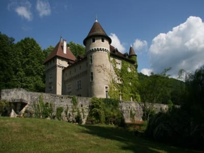 Image 3 | 11 bedroom French chateau for sale, Saint Jean de Chevelu, Savoie , Lake Bourget 203763