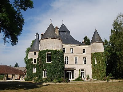 Image 2   8 bedroom French chateau for sale with 242,811m2 of land, Valencay, Indre , Centre 204100