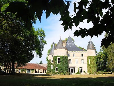 Image 4   8 bedroom French chateau for sale with 242,811m2 of land, Valencay, Indre , Centre 204100