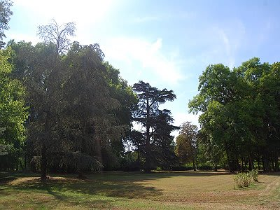 Image 7   8 bedroom French chateau for sale with 242,811m2 of land, Valencay, Indre , Centre 204100