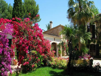 Image 5 | 5 bedroom villa for sale with 40,000m2 of land, Binissalem, Central Mallorca, Mallorca 204356