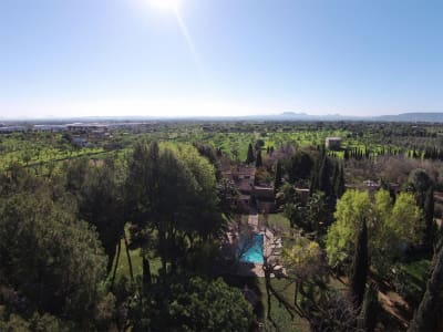 Image 6 | 5 bedroom villa for sale with 40,000m2 of land, Binissalem, Central Mallorca, Mallorca 204356