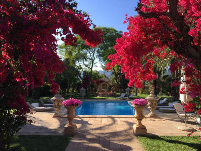 Image 7 | 5 bedroom villa for sale with 40,000m2 of land, Binissalem, Central Mallorca, Mallorca 204356