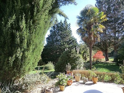 Image 8 | 3 bedroom house for sale with 30,000m2 of land, Mouthoumet, Aude , Languedoc-Roussillon 204494
