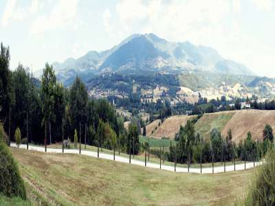 Image 16   Superb Castle for Sale close to Florence with Tourist and Wine Business & 47 Hectares of Land  208304