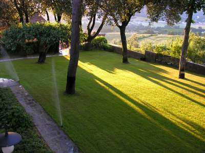 Image 6   Superb Castle for Sale close to Florence with Tourist and Wine Business & 47 Hectares of Land  208304