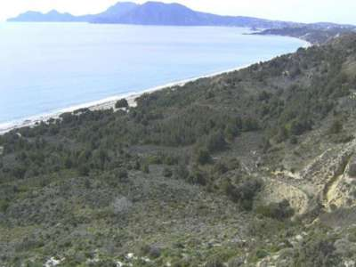 Image 6 | Wonderful Opportunity: Plot for Sale to Build a Beach Side Hotel Resort on the Greek Island of Kos 209275