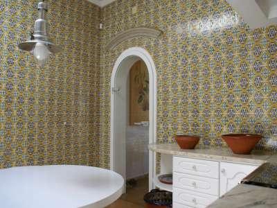 Image 10 | 4 bedroom villa for sale with 16,240m2 of land, Santa Barbara de Nexe, Central Algarve, Algarve 210820