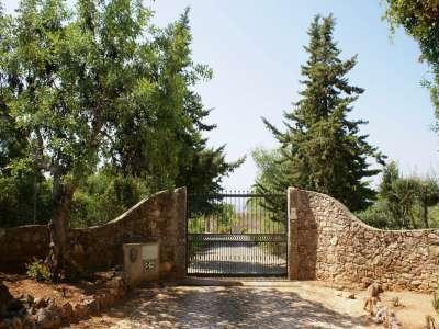 Image 4 | 4 bedroom villa for sale with 16,240m2 of land, Santa Barbara de Nexe, Central Algarve, Algarve 210820