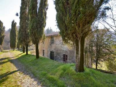 Image 20 | 7 bedroom villa for sale with 30,000m2 of land, Lucca, Tuscany 215293