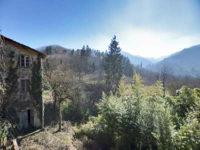 Image 25 | 7 bedroom villa for sale with 30,000m2 of land, Lucca, Tuscany 215293
