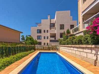 Image 16 | 3 bedroom penthouse for sale, Bonanova, Palma Area, Mallorca 216064