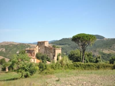 Farmhouse for sale, San Gimignano, Siena, Chianti