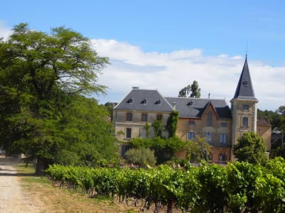 20 bedroom French chateau for sale, Avignon, Vaucluse, Provence French Riviera