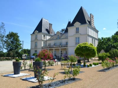 18 bedroom French chateau for sale, Chateau Gontier, Mayenne, Pays-de-la-Loire