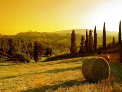 Five star Tuscan hotel for sale with 14 guest suites and outbuildings to restore