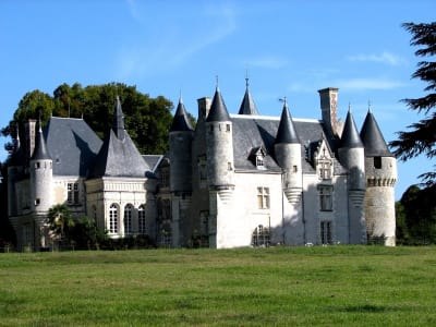 8 bedroom French chateau for sale, Loches, Indre-et-Loire, Loire Valley