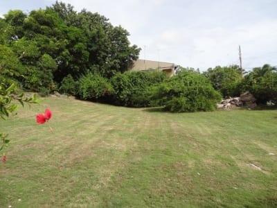 Plot of land for sale, Graeme Hall Park, Christ Church