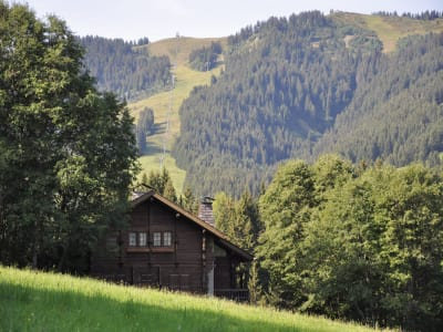 4 bedroom ski chalet for sale, Megeve, Haute-Savoie, Rhone-Alpes