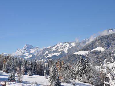 Image 3   6 bedroom ski chalet for sale, Rochebrune, Megeve, Haute-Savoie , Rhone-Alpes 195027