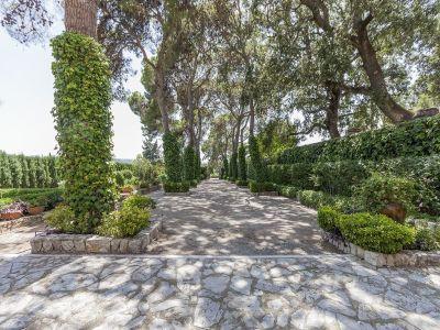 Image 12 | 10 bedroom villa for sale with 70,000m2 of land, San Lorenzo des Cardassar, North Eastern Mallorca, Mallorca 195947