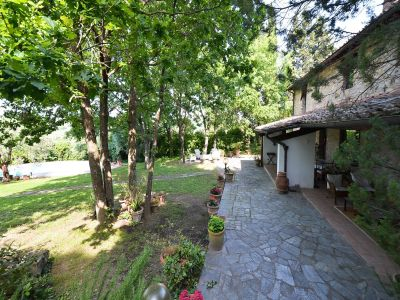 Image 4 | 3 bedroom villa for sale with 10,000m2 of land, Florence, Chianti 201187