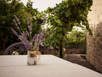 Image 8 | Superb Trulli Complex Hotel for 40 guests with Pool for Sale in Puglia, Italy. 209393