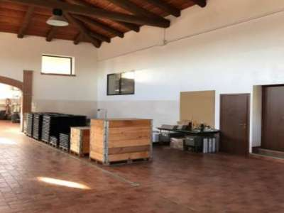 Image 11 | Superb Family Run Winery for Sale in Alba with Productions of Nebbiolo, Barbera, Dolcetto & Arneis 209723