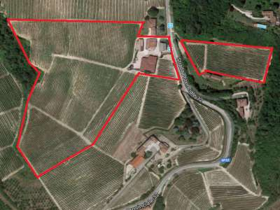 Image 33 | Superb Family Run Winery for Sale in Alba with Productions of Nebbiolo, Barbera, Dolcetto & Arneis 209723