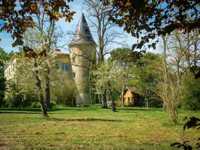 7 bedroom French chateau for sale, Castres, Tarn, Midi-Pyrenees